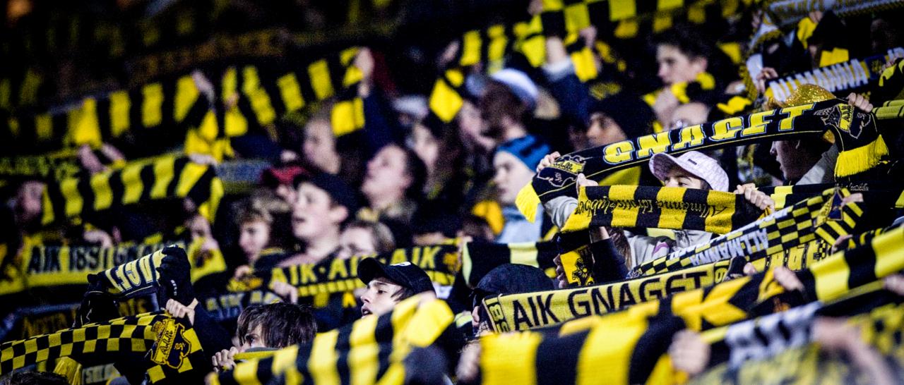 Utlånade spelare tillbaka i AIK
